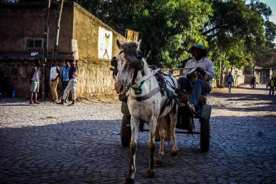 Adama (Ethiopia)