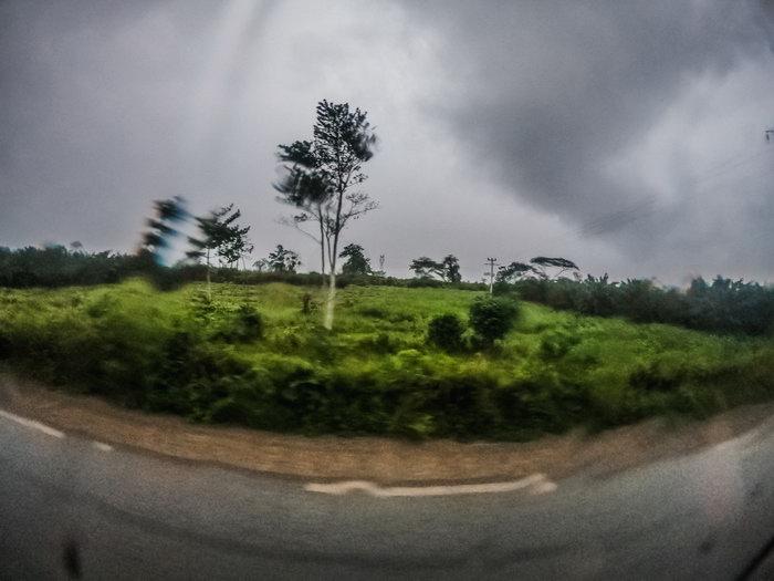 Ivory Coast itself