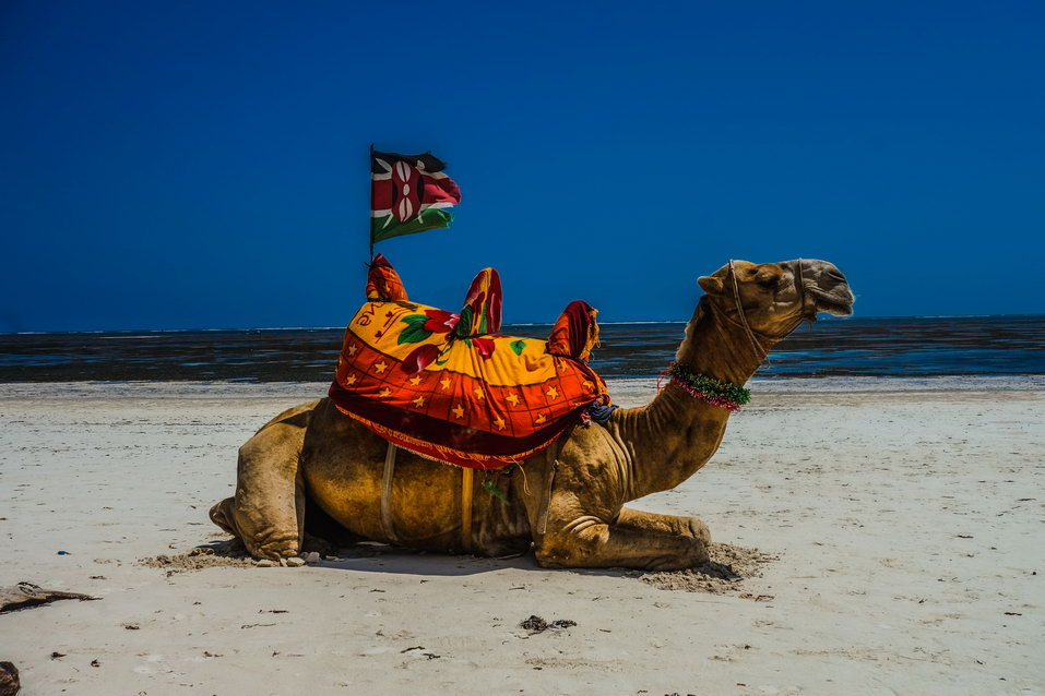Mombasa (Kenya)