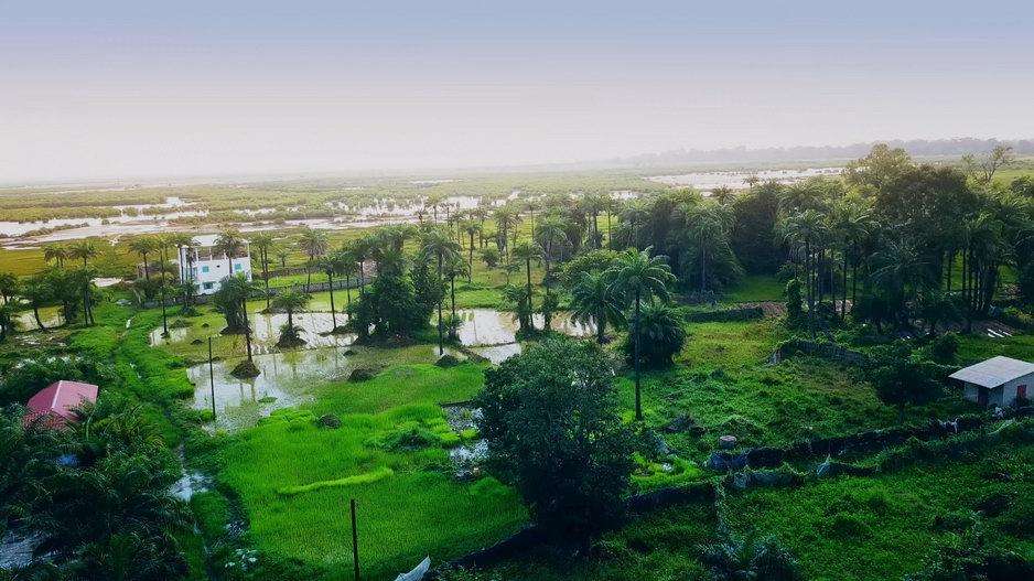 Drone Picture Senegal itself