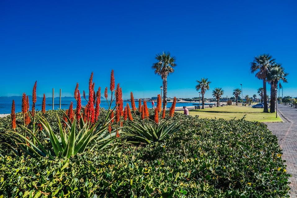 Garden Route (South Africa)