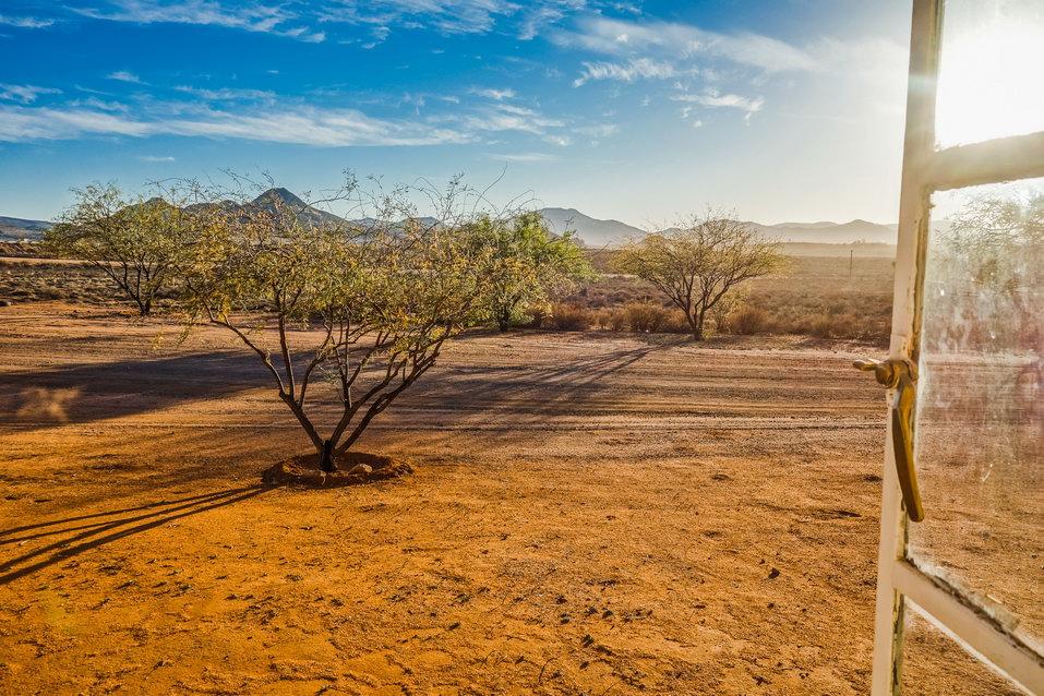 Springbok (South Africa)