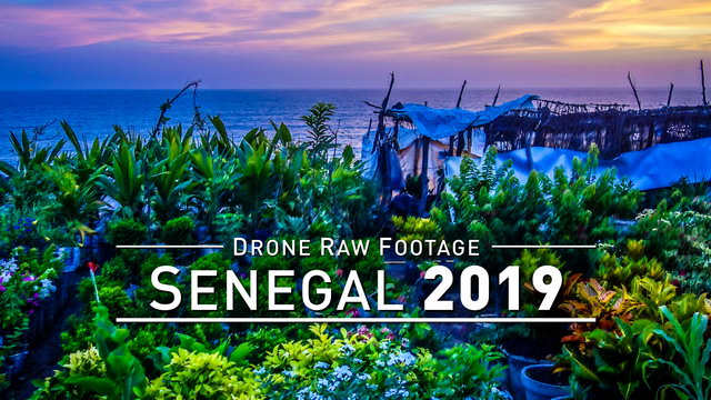 【4K】Drone RAW Footage | SENEGAL 2019 ..:: Ziguinchor | UltraHD Stock Video