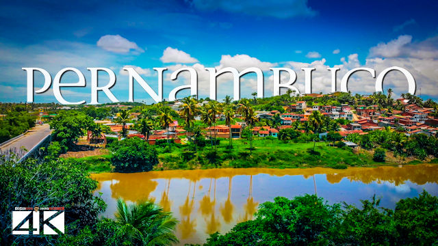 【4K】The Nature of Pernambuco from Above - BRAZIL 2020 | Cinematic Wolf Aerial™ Drone Film