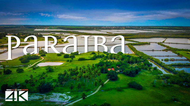【4K】The Nature of Paraiba from Above - BRAZIL 2020 | Cinematic Wolf Aerial™ Drone Film