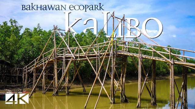 【4K】Bakhawan Eco-Park from Above - PHILIPPINES 2020 | Kalibo | Cinematic Wolf Aerial™ Drone Film