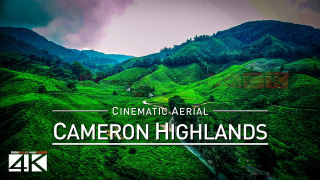 【4K】Drone Footage | CAMERON HIGHLANDS ..:: Malaysias Natural Wonder 2019