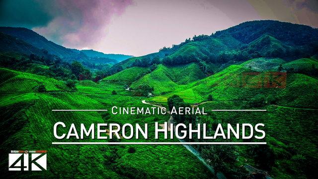 【4K】Drone Footage | CAMERON HIGHLANDS ..:: Malaysias Natural Wonder 2019