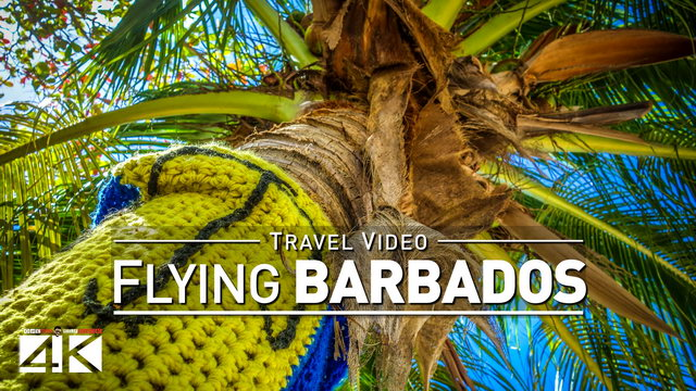 【4K】Footage | Landing in BARBADOS ..:: Caribbean 2019