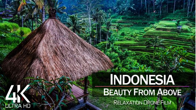 【4K】| INDONESIA from Above 2021 | Cinematic Wolf Aerial™ Drone Film