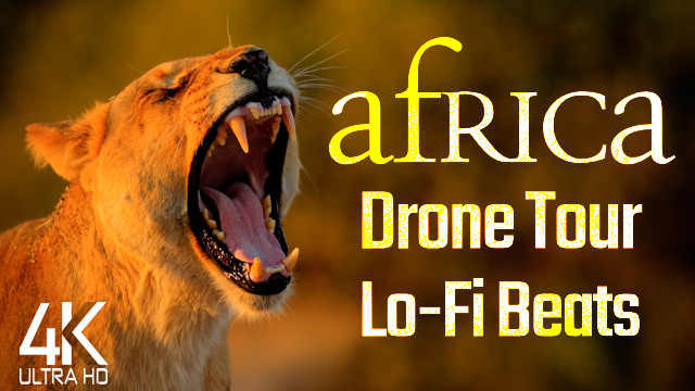 【4K】DRONE FILM: «The Beauty of Africa» | Ultra HD | Lo-Fi Chillout Music
