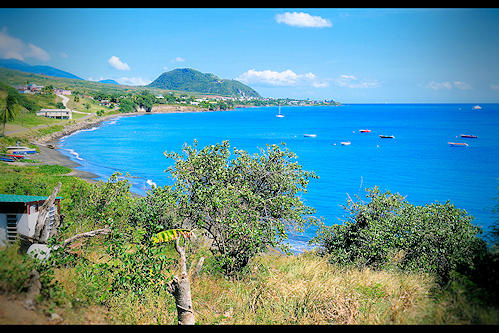 Saint Kitts and Nevis (Saint Kitts and Nevis)